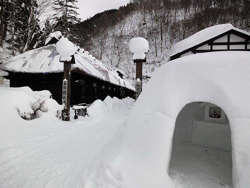 入り口雪降らず.jpg